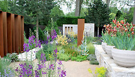 Best in show - 'The Daily Telegraph Garden'